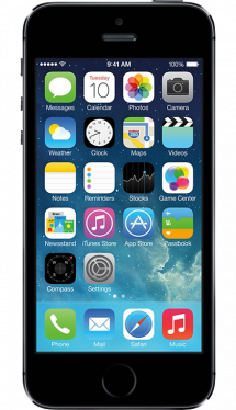 iPhone 5S (16GB)