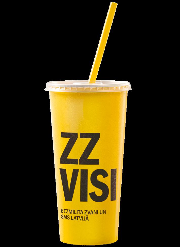 ZZ VISI